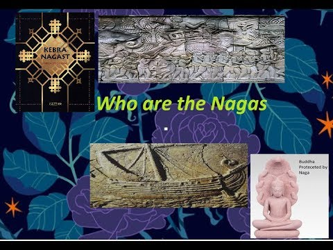 Who are the nagas of south india